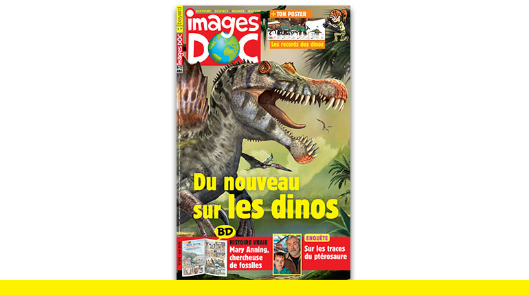 Images Doc : du nouveau sur les dinosaures !