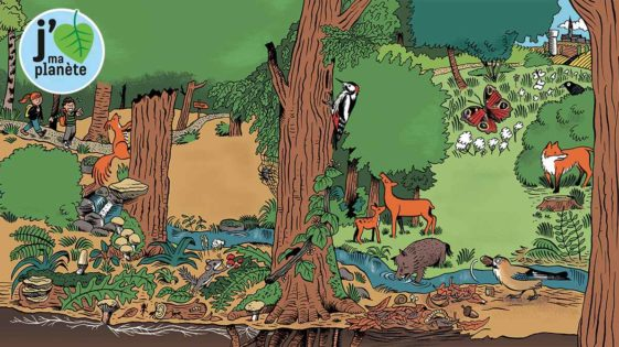 Prendre soin de la nature, ça s'apprend dès le plus jeune âge!