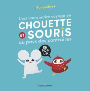 couverture du livre 'L'extraordinaire voyage de Chouette et Souris au pays des contraires en pop-up'