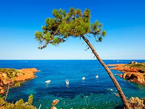 Les vacances au soleil, les pieds dans l'eau, dans un site superbe.