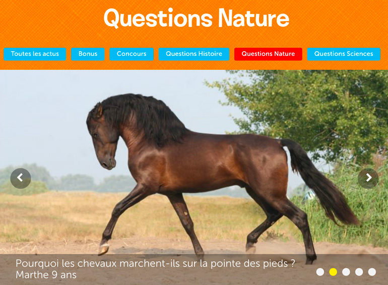 """Réponses aux """"Questions histoire"""", """"Questions sciences"""", """"Questions nature""""... sur le blog Images Doc."""