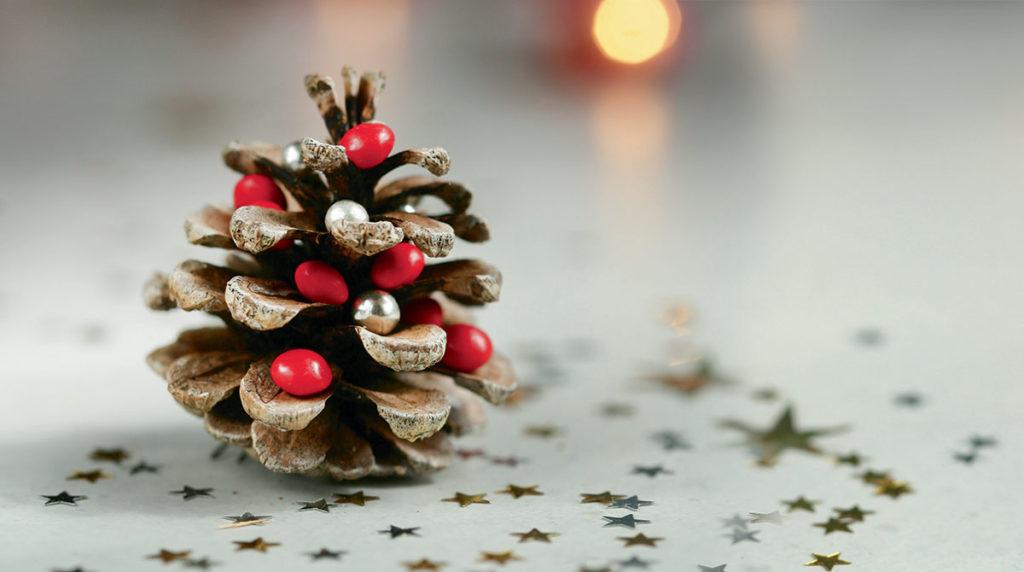 Bricolages de Noël. Pomme d'Api.